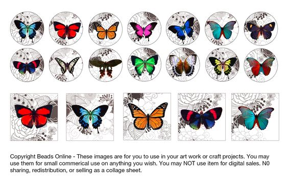 Free Digital Download - Colourful butterflies on black and white