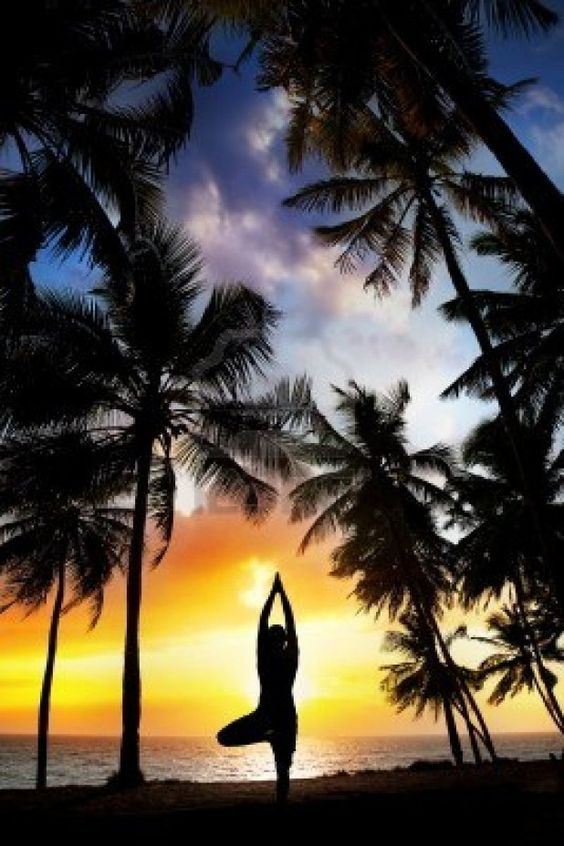 16757374-yoga-tree-pose-silhouette-by-man-at-palm-trees-ocean-and-sunset-sky-background-in-india:
