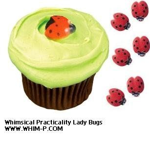 Amazon.com: Lucks Ladybug Sugar Decorations Dec-on for Cupcakes Cakes decorations 48 Pk: Everything Else