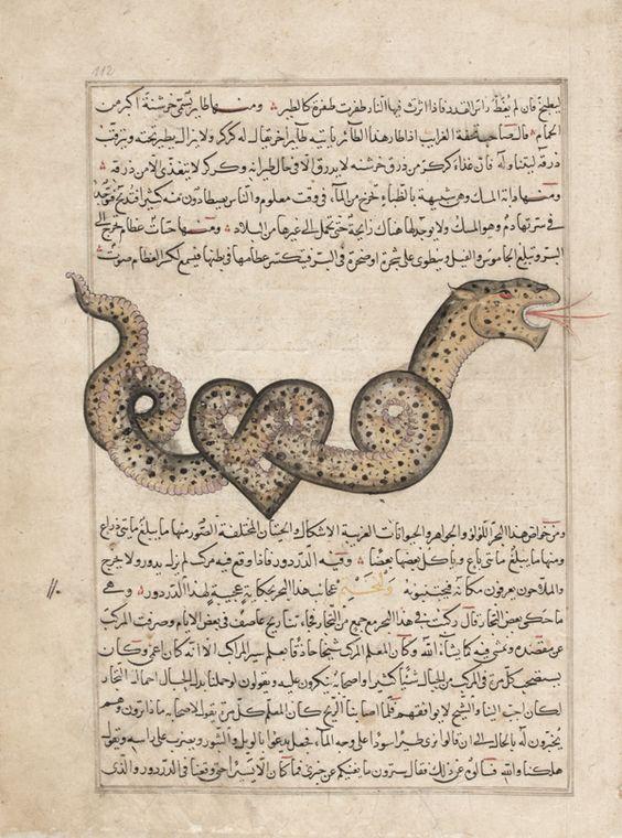 Folio from a Aja'ib al-makhluqat (Wonders of Creation) by ...