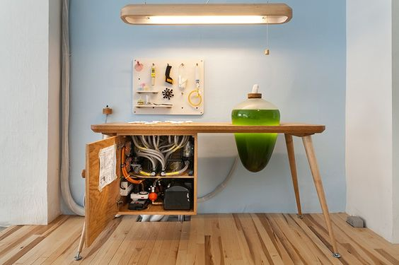 living-thing-photosythetic-furniture-designboom-06