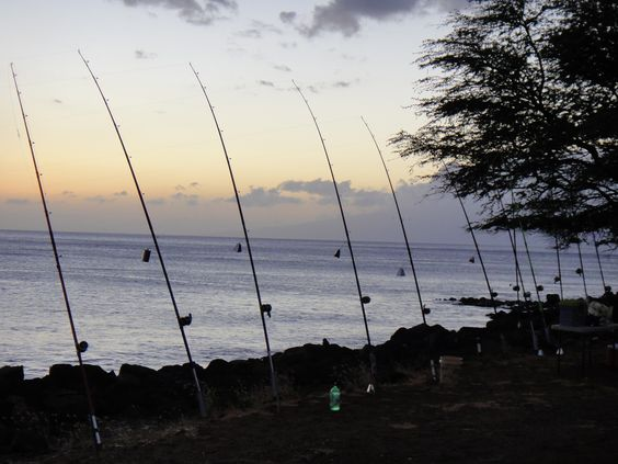 Ulua fishing at wahikuli park in lahaina the ulua for Fishing in maui