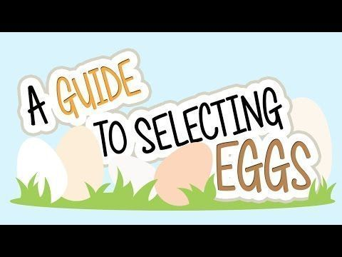 Egg Nutrition Facts Information A Guide To Selecting Eggs Youtube Eggnutritionfacts Egg Nutriti Egg Nutrition Facts Nutrition Facts Nutrition Facts Label