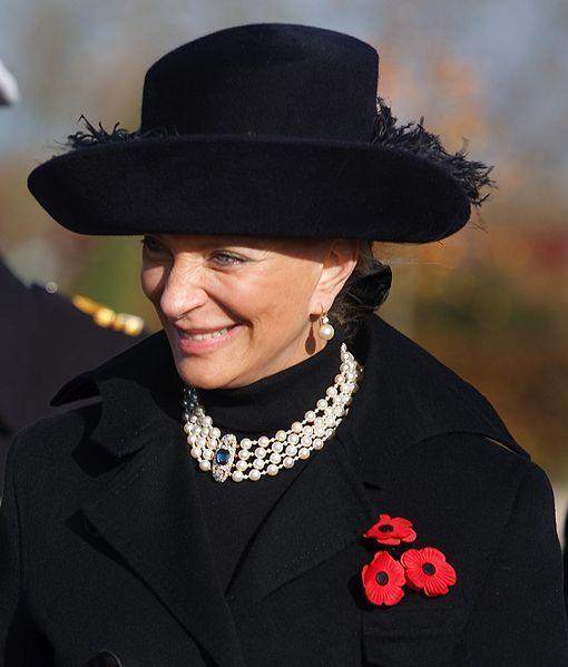 Princess Michael of Kent on Armistice Day, 2008.