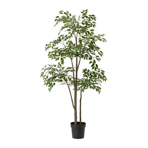 Fejka Artificial Potted Plant Weeping Fig Ikea Artificial Potted Plants Small Artificial Plants Artificial Plants Outdoor