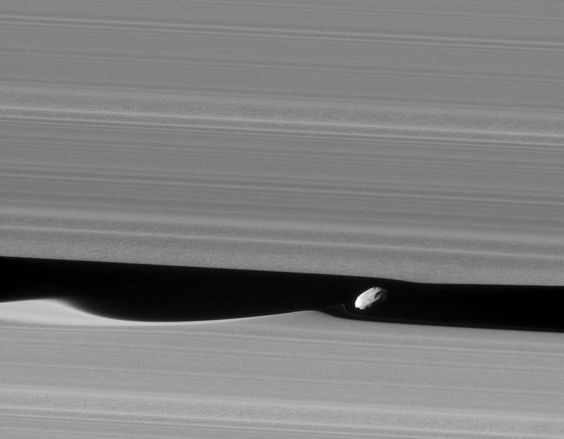 Daphnis the Wavemaker  Image Credit: Cassini Imaging Team, SSI, JPL, ESA, NASA
