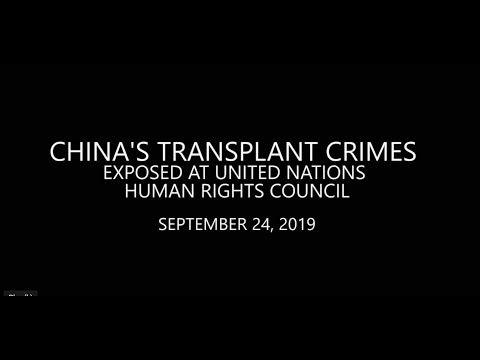 Hamid Sabi China Tribunal Un Human Rights Council 42nd Session 2019 Ingenieurs Du Monde Yo Un Members United Nations Human Rights Human Rights Council