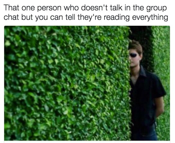 21 Memes To Send To Your Group Chat Immediately Memes Humor Really Funny