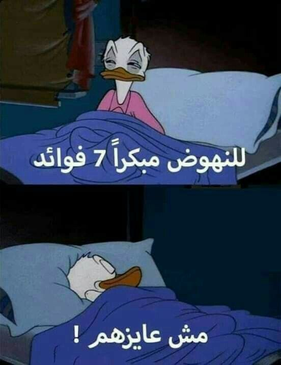 Funny Photo Memes Funny Picture Jokes Funny Arabic Quotes