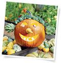 Jack O Lanterns  - Better Homes and Gardens - Yahoo!7