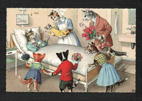 alfred mainzer cat postcards   Alfred Mainzer Cats Postcard, Printed in Belgium, # 4932   Just Cats!