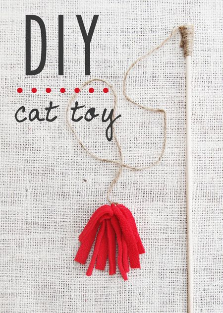 Cat toys homemade cat toys and toys on pinterest for Diy cat wand