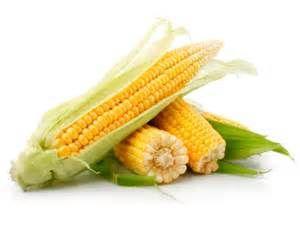 tempo de cozimento do milho