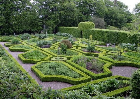 Herbs garden herbs and gardens on pinterest for Irish garden designs