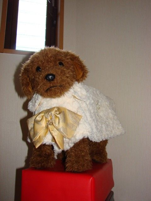 2014冬ハンドメイド新作 限定2着販売羊みたいな暖かファーコートです。裏地はイエローのスカーフ様生地で前には大きなリボンがついています。袖無しのラップ型にな... ハンドメイド、手作り、手仕事品の通販・販売・購入ならCreema。