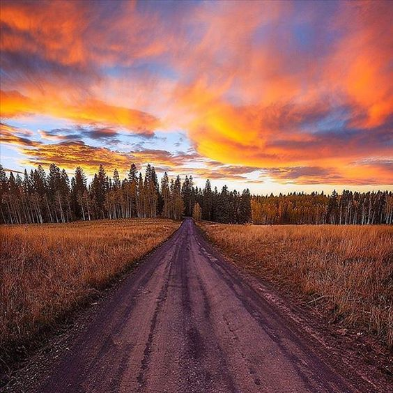 Such a gorgeous #sunset view from #Colorado! #ItsAmazingOutThere : @vats1234