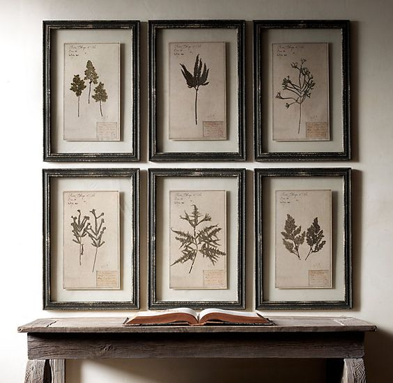 Kitchen Herbarium Art: Pinterest • The World's Catalog Of Ideas