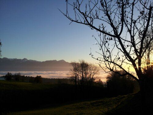 A view over the mist that settles down on Lake Geneva at times during winter. We have to drive above it to see the sun.