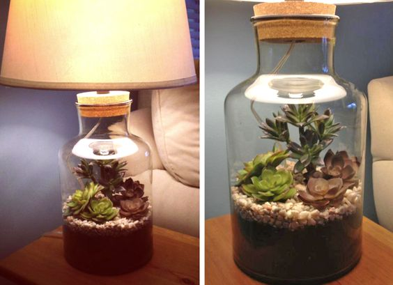 Made my own (faux) terrarium lamp! Glass lamp from Christmas Tree Shop, dirt & stones from Home Depot, plants from Michaels.