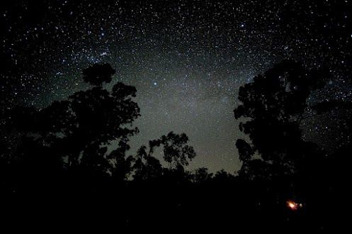 Campfire under the stars  The stars in the Australian outback are really something. When you get away from the light pollution of the cities you see more stars then you can ever imagine.