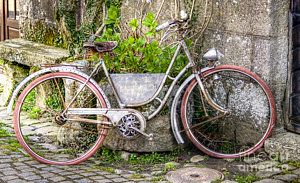 Vintage Bicycle Photograph - The Old Bicycle by Sophie De Roumanie