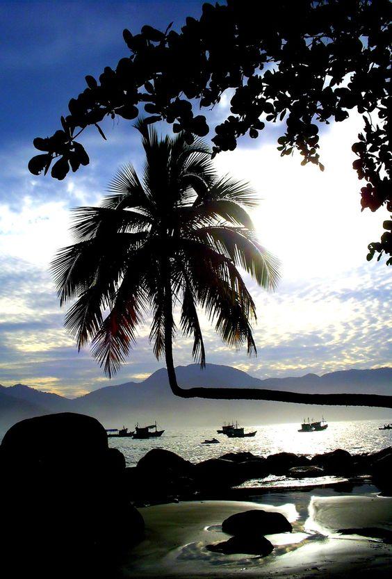Ilha Grande - Rio de Janeiro, Brasil.:
