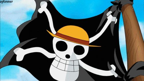 One Day Opening 13 - One Piece