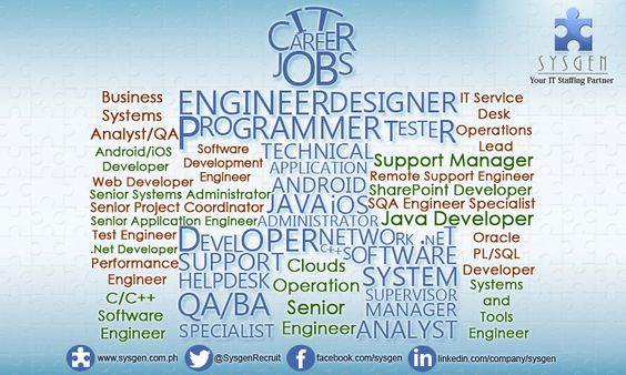 Business Process Sr IT Analyst or Consultant http\/\/sysgenph - application engineer job description