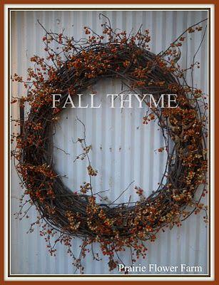 Fall Thyme, Prairie Flower Farm, September 2010