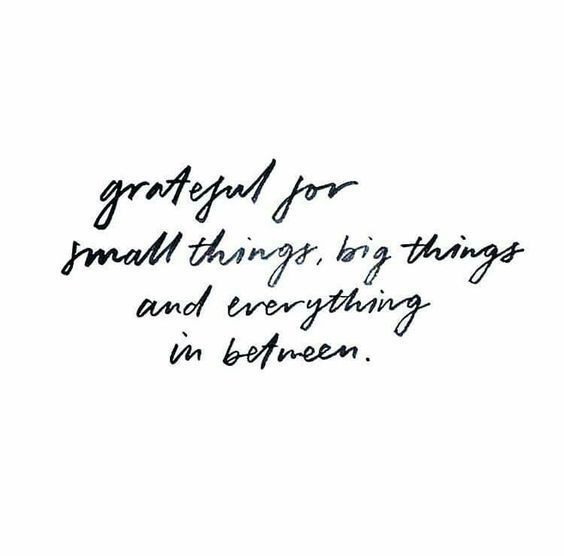 grateful for small things, big things and everything in between