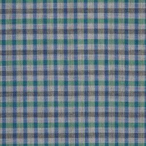 Green/Blue/Gray Gingham Cotton Shirting. Troy Negroni