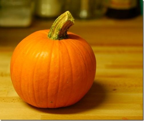 """How To: Make Your Own """"Canned"""" Pumpkin!"""