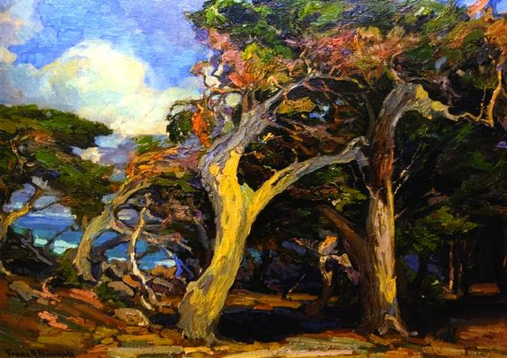 The Athenaeum - Windswept Twisted Cypress (Franz Bischoff - )