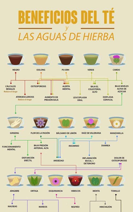Beneficios del té y las aguas de hierbas. #infografia #te #infusiones