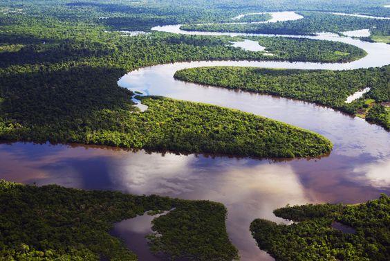 El Amazonas, el río más largo del mundo: Amazon Rainforest, Beautiful Places, Amazonas Después, Brazil Amazon, Colombian Rivers