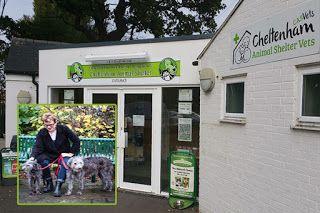 Cheltenham Animal Shelter Animal Shelter Cheltenham Farm Dogs