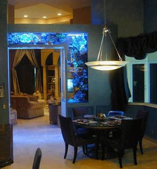 Feng shui for wealth with fish tanks custom football salts and home aquarium - Decorative fish tanks for living rooms ...