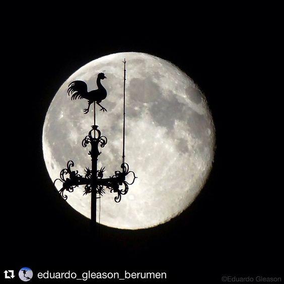instaartistico#Instaartista @eduardo_gleason_berumen hermosa foto del gallo en la luna!  Los invitamos a usar nuestra etiqueta #⃣instaartista   Imprime tus fotos en materiales increíbles con Insta-Arte en: www.insta-arte.com.mx