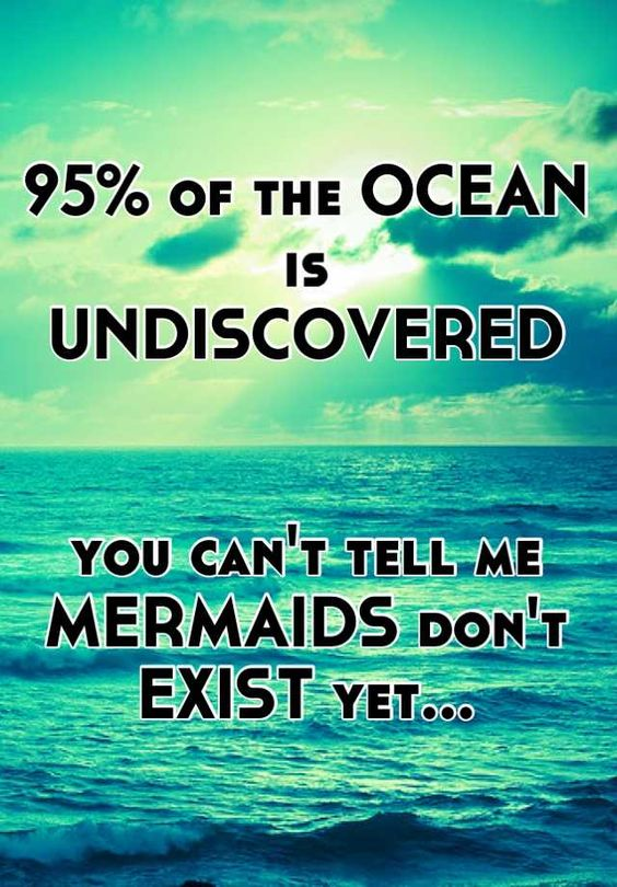 All the new mermaid documentaries on Discovery about human evolving from mermaids are quite fascinating; we DO have a small bit of skin webbing between our fingers & toes and we are composed mostly of water after all...: