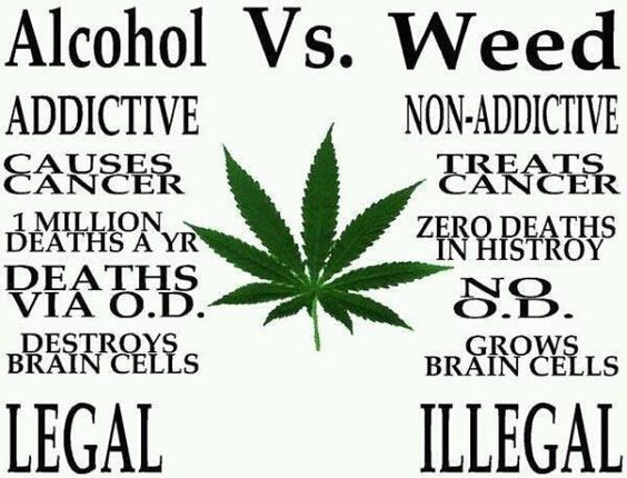 Types Of Weed Is The Nets Best Medical Marijuana Site Full Of Best