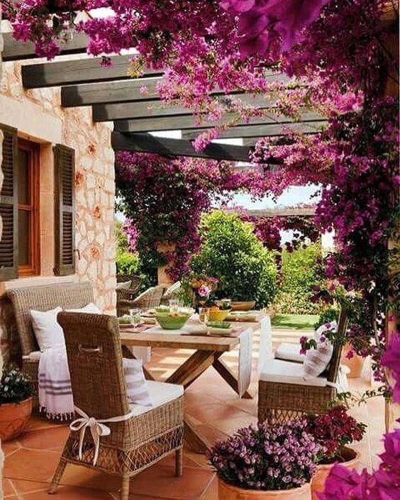 Gostava de ter um jardim assim? 💚 Conheça algumas plantas que crescem quase sem água 💦 Saiba mais 👉🏼 link na bio #buganvilia #flores #plantas #jardinagem #jardim #jardimencantado #natureza #lifestyleblog #lifestyle #vidanojardim #vidanocampo #asenhoradomonteblog #asenhoradomonte