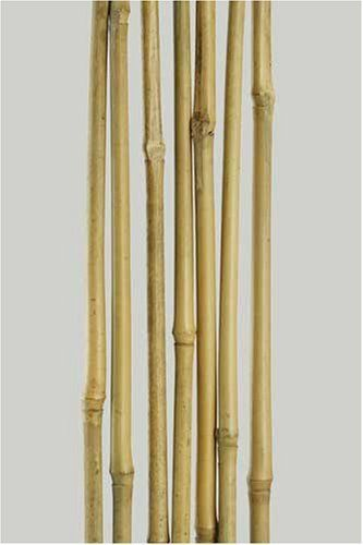 Bamboo Garden Stakes 38 X 5 Feet 15 Poles Per Carton by Bamboo