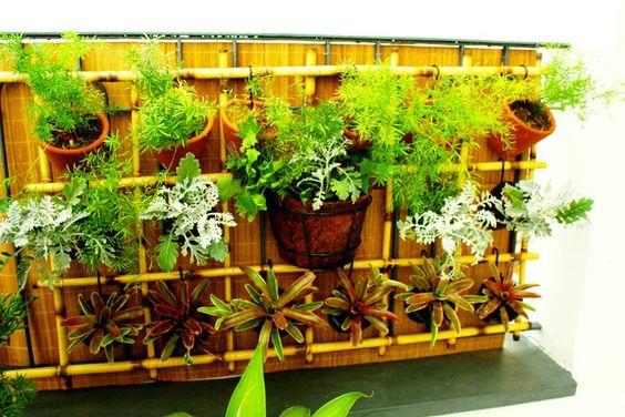 Jardim vertical em varanda de cobertura em pinheiros sp - Plantas pleno sol ...