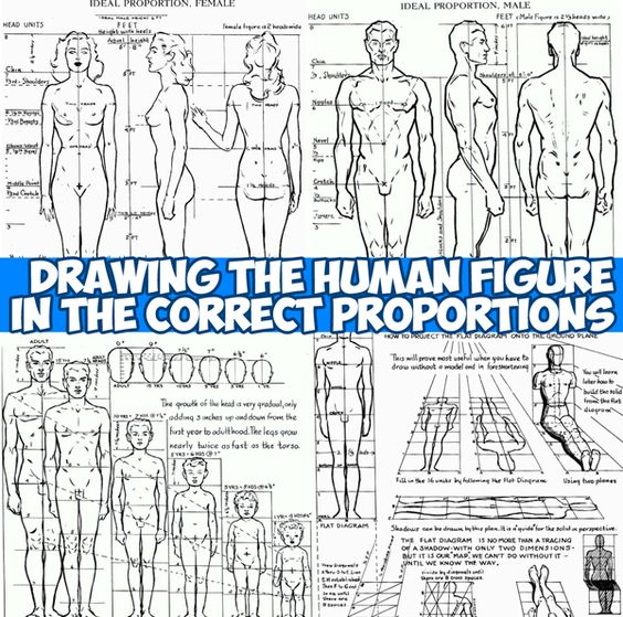 Sketch Is Just A Delicious Piece Of Human: Human Figures, Draw And How To Draw On Pinterest
