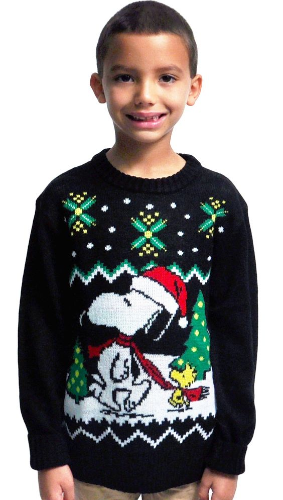 Snoopy Woodstock Boys Christmas Knit Sweater