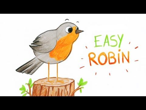How To Draw A Cute Robin Bird Easy Way Comment Dessiner