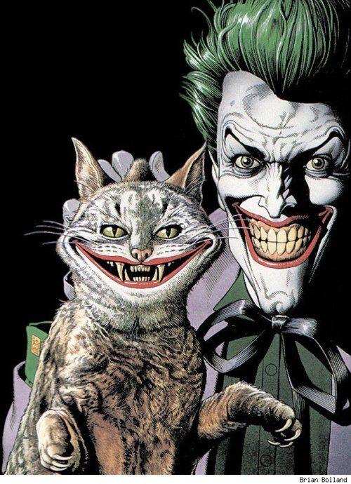 the joker's cat, brian bolland