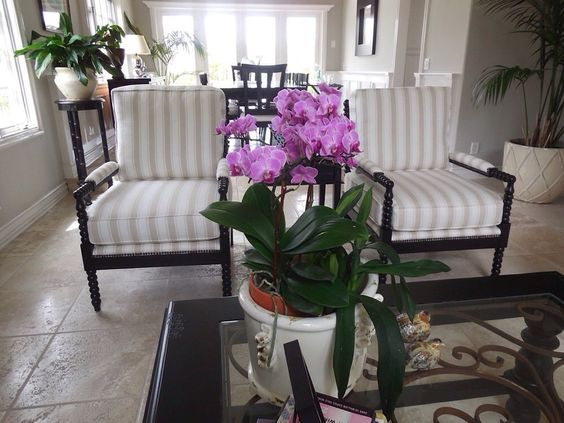 Sofas By Design San Clemente Ca United States Love The Chairs
