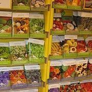 How to Get Free Flower and Vegetable Seed Catalogs | eHow
