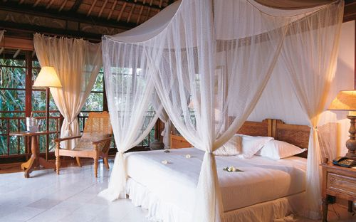 Four poster canopy bed with all my pillows if walls for Tropical canopy bed